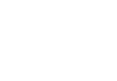 Turtle Rock Studios Logo